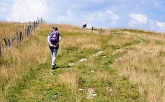 AltissimoNews: Ad Asiago un corso post diploma sul turismo montan...Ad Asiago un corso post diploma sul turismo montano