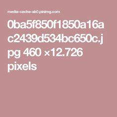 0ba5f850f1850a16ac2439d534bc650c.jpg 460 ×12.726 pixels