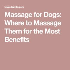 Dog massage is a great way to improve your dog's health and get in some great bonding time. Dog massage can improve a dog's physical and mental health. Massage Tips, Massage Benefits, Massage Techniques, Massage Therapy, Health And Wellness, Health Fitness, Good Mental Health, Health Problems, Dog Grooming
