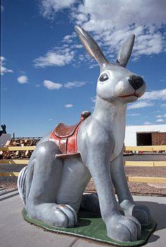 Jack Rabbit, Jack Rabbit Trading Post, Route 66, Joseph City, Arizona