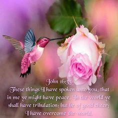 Be of good cheer. You have already overcome...John 16:33 KJV