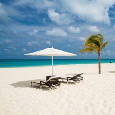 Bucuti & Tara Beach Resort Aruba is the PERFECT place to honeymoon!