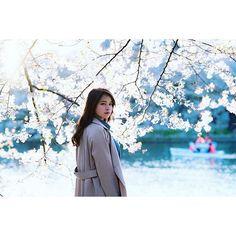 【kabuki777】さんのInstagramをピンしています。 《#カメラ好きな人と繋がりたい #カメラ女子 #東京カメラ部 #写真撮ってる人と繋がりたい #写真好きな人と繋がりたい #写真部 #ファインダー越しの私の世界 #青森 #弘前 #ミスキャン #ポートレート #ポートレート部 #桜 #portrait #portraitphotography #portrait_perfection #portraitmood #rsa_portraits #webstagram #jj_portraits #jj_mobilephotography #tokyocameraclub #igers #igersjp》