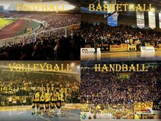 #AEK_FC_OFFICIAL #AEK_FC #21AEK #oraAEK Athens, Volleyball, First Love, Spirit, Football, Handball, Soccer, Futbol, First Crush