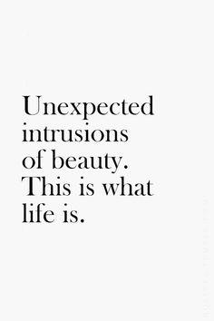 A vida é linda!