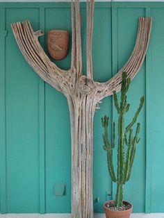 10 Ft Tall Saguaro Cactus Skeleton Our Stuff Pinterest