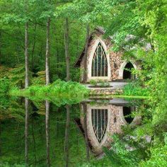 dream house in the woods