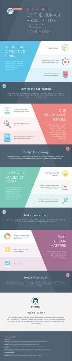 Hola: Una infografía con 12 secretos del cerebro para usar en Marketing Digital. Vía Un saludo