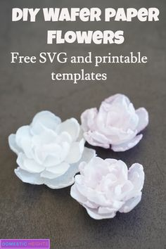 Cricut paper flowers project made with wafer paper, free svg templates and tutorial Rolled Paper Flowers, Wafer Paper Flowers, Birthday Gifts For Teens, Teen Birthday, Painting Canvas Crafts, Duck Tape Crafts, Paper Peonies, Tea Candles, Paper Flower Tutorial