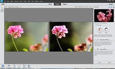 Latest version of Adobe Photoshop Elements (11.0) has come up with some of the amazing Guided-Edits and one of them is 'LOW-KEY' effect. Above image is giving you some sense of Low-Key effect although results vary from one photograph depending upon the lighting spectrum in the photograph. Let's check out the workflow to achieve this and understand how it works on your photographs.Open a photograph in Editor of Adobe Photoshop Elements 11. Go to File Menu and open your photograph in Editor…