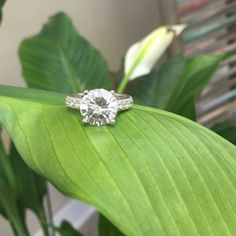 4.27ct Large Brilliant Engagement Ring Lead free alloy (brass) with rhodium playing for a platinum finish. Large brilliant round cubic zirconia as the center stone with cubic zirconia accents. Ocean Jewelers Jewelry Rings