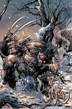 wolverine in Collectible Comics Wolverine Comics, Marvel Comics Art, Wolverine Images, Logan Wolverine, Comic Books Art, Comic Art, Book Art, Marvel Universe, Comics Anime