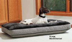 """Plush Top Napper Dog Bed in Black/Charcoal Large 48"""" x 28"""""""