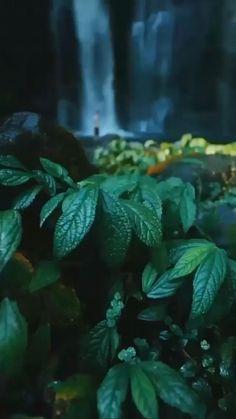 Wallpaper Nature Flowers, Beautiful Landscape Wallpaper, Beautiful Landscapes, Beautiful Photos Of Nature, Amazing Nature, Landscape Photography, Nature Photography, Love Wallpapers Romantic, Best Background Images