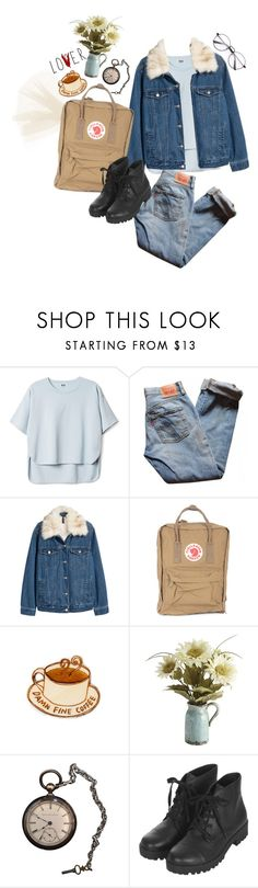 """""""untitled #65"""" by nightcore-832 ❤ liked on Polyvore featuring interior, interiors, interior design, home, home decor, interior decorating, Levi's, H&M, Fjällräven and Pier 1 Imports"""