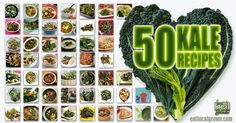 Love kale, but need some fresh ways to work the leafy green into your diet? Here's a great collection of Main Courses, Salads, Side Dishes, Chips, Smoothies, Soups, and even Kale Desserts!