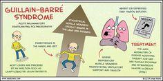 guillain-barré syndrome - Google Search