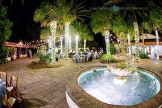 The Jaguar area at the zoo!  Venue Spotlight on the Jacksonville Zoo- Jacksonville Wedding Photographer http://www.christywhiteheadphotography.com/venue-spotlight-on-the-jacksonville-zoo-jacksonville-wedding-photographer/?utm_campaign=coschedule&utm_source=pinterest&utm_medium=Christy%20Whitehead%20Photography&utm_content=Venue%20Spotlight%20on%20the%20Jacksonville%20Zoo-%20Jacksonville%20Wedding%20Photographer