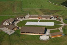 Horse facility around arena
