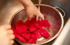 Langkah-langkah Membuat Air Mawar Sendiri Di Rumah | Natural Hut (Sabun Natural Handmade)
