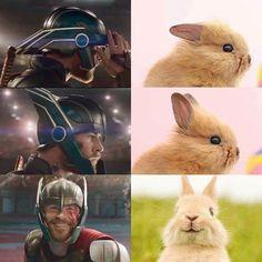 Ideas for funny marvel comics the avengers thor Avengers Humor, Marvel Jokes, Ms Marvel, Marvel Avengers, Funny Marvel Memes, Stupid Funny Memes, Funny Relatable Memes, 9gag Funny, Animal Memes
