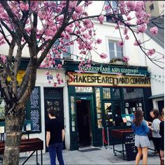 #StudyAbroadBecause Spring and Shakespeare. College Tourist, Sarah In Spain.
