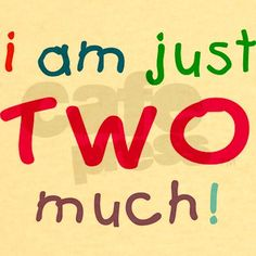 Clever two year old quotes in bright colors for that special second birthday. I am just TWO much!. 2nd birthday tee shirt will be a great birthday present and reminder of a magic time.