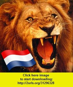 Oranje Soundboard, iphone, ipad, ipod touch, itouch, itunes, appstore, torrent, downloads, rapidshare, megaupload, fileserve
