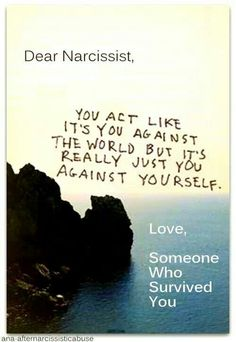 Not a hero, narc's are a nightmare come true! A recovery from narcissistic sociopath relationship abuse.