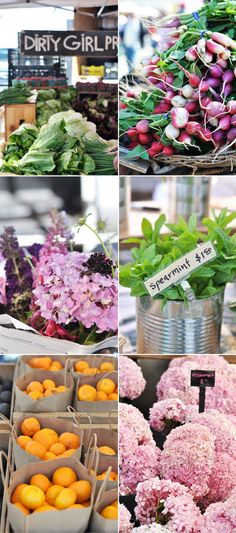 Ferry Building Farmer's Market in San Francisco, a lovely place to stroll, snack, or snap!