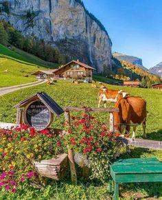 Urban Landscape Photography Tips – PhotoTakes Switzerland Summer, Switzerland Vacation, Beautiful Photos Of Nature, Beautiful Landscapes, Beautiful Places, Cool Places To Visit, Places To Go, Places Around The World, Around The Worlds