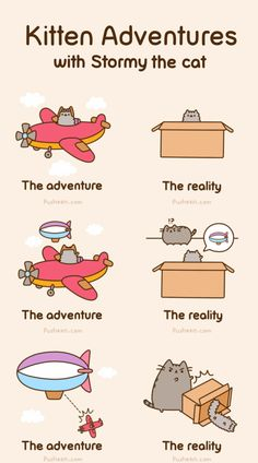 kitten adventures - funny comic