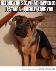 Before you see upstairs…