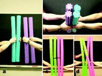 Using pool noodles to teach mitosis and meiosis:  genius!
