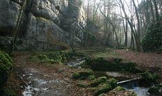 Kaltbrunnental: Höhlenland und Feenreich - Beobachter Country Roads, River, Plants, Outdoor, Water Well, Cold, Switzerland, Aboriginal People, Fairies
