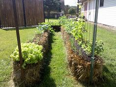 Another great site on straw bale gardening. I'm really considering doing this.(ch)