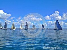 Ocean Regatta - Download From Over 26 Million High Quality Stock Photos, Images, Vectors. Sign up for FREE today. Image: 44486666
