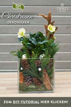 DIY Christmas decoration: with a little moss, twigs and cones, Christmas roses can be … – Small Balcony Decor Ideas Wooden Christmas Crafts, Christmas Decorations, Disney Decorations, Christmas Projects, Chef Kitchen Decor, Fleurs Diy, Christmas Rose, Pot Sets, Diy Décoration