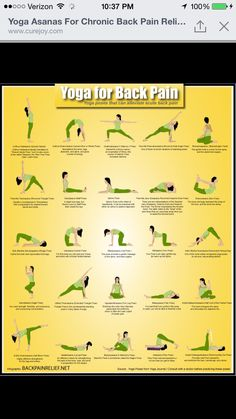 pin on back pain exercises
