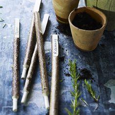 Natures Markers, Five Hazel Plant Labels