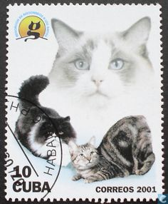 Postage Stamps - Cuba [CUB] - Cats and Dogs