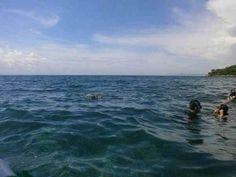 snorkling di perairan pulau Cumi