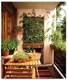 Image result for mini balcony gardens