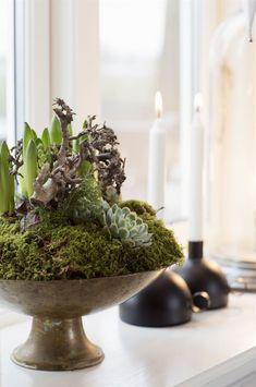 Bytte nyrenoverat i Trollhättan mot ett ruckel Floral Arrangements, Candle Holders, Sweet Home, Christmas Decorations, Candles, Plants, Ikea, Inspiration, Beautiful