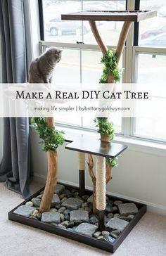 See how I made this DIY cat tree using real tree branches for only $75.12--modeled after an $800 tree!   make a homemade cat tree, make a cat tree with real branches, DIY cat tree