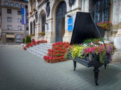 Craiova Barbarian, Romania, Sidewalk, Europe, Walkway, Pavement