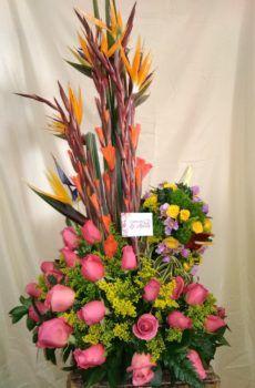 Productos – Página 2 – Floristeria la Maria Celestial, Plants, Ideas, Flower Arrangements, Large Flower Arrangements, Christmas Ornaments, Bouquets, Products, Plant