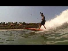 Surfing with The Abbie Hoffman Society