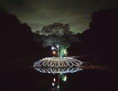 Starry Night Light Instillation via Miriam Sagan