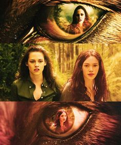 Im sorry but she has grown up so fast. They probably shouldnt have picked an actor that seriously looks older than Bella